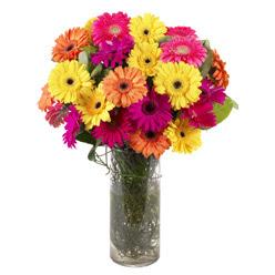 KARISIK GERBERALARDAN CAM VAZO TANZIMI  Gaziantep internetten çiçek satışı