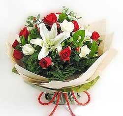 güller ve kazablanklardan görsel bir buket  Gaziantep güvenli kaliteli hızlı çiçek