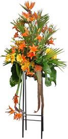 Gaziantep kaliteli taze ve ucuz çiçekler  perförje tanzimi dügün nikah ve açilislara