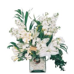 Gaziantep online çiçekçi , çiçek siparişi  sadece beyazlardan olusmus mevsim cam yada mika tanzim