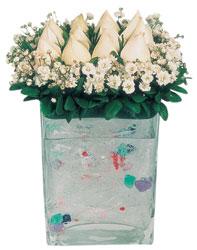 Gaziantep çiçek mağazası , çiçekçi adresleri  7 adet beyaz gül cam yada mika vazo tanzim