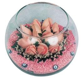 Gaziantep güvenli kaliteli hızlı çiçek  cam fanus içerisinde 10 adet gül