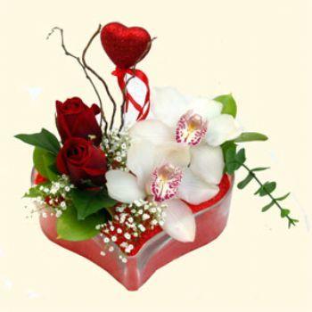 Gaziantep çiçek , çiçekçi , çiçekçilik  1 kandil orkide 5 adet kirmizi gül mika kalp