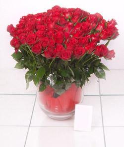 Gaziantep çiçek gönderme sitemiz güvenlidir  101 adet kirmizi gül