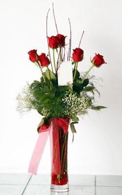Gaziantep çiçek yolla  6 adet kirmizi gül ve cam yada mika vazo