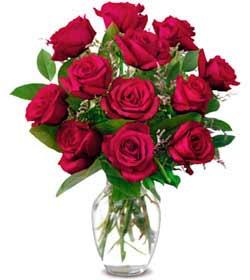 Gaziantep İnternetten çiçek siparişi  1 düzine kirmizi gül sevenlere özel vazo gülleri