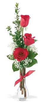 Gaziantep çiçek yolla  mika yada cam vazoda 3 adet kirmizi gül
