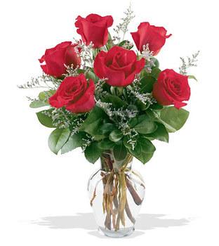 Gaziantep çiçek yolla  cam yada mika vazoda 6 adet kirmizi gül