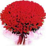 Gaziantep internetten çiçek siparişi  1001 adet kirmizi gülden çiçek tanzimi