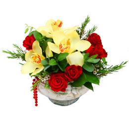 Gaziantep uluslararası çiçek gönderme  1 kandil kazablanka ve 5 adet kirmizi gül