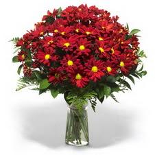 Gaziantep cicekciler , cicek siparisi  Kir çiçekleri cam yada mika vazo içinde