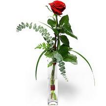 Gaziantep çiçekçi telefonları  Sana deger veriyorum bir adet gül cam yada mika vazoda