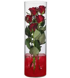 cam içerisinde 7 adet kirmizi gül  Gaziantep yurtiçi ve yurtdışı çiçek siparişi