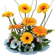 camda gerbera ve mis kokulu kir çiçekleri  Gaziantep 14 şubat sevgililer günü çiçek