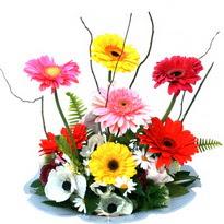 Gaziantep çiçek servisi , çiçekçi adresleri  camda gerbera ve mis kokulu kir çiçekleri