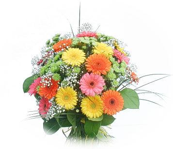13 adet gerbera çiçegi buketi  Gaziantep İnternetten çiçek siparişi