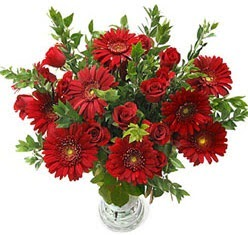 5 adet kirmizi gül 5 adet gerbera aranjmani  Gaziantep çiçek servisi , çiçekçi adresleri