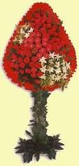Gaziantep uluslararası çiçek gönderme  dügün açilis çiçekleri  Gaziantep ucuz çiçek gönder