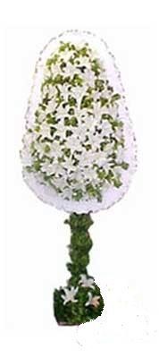Gaziantep kaliteli taze ve ucuz çiçekler  nikah , dügün , açilis çiçek modeli  Gaziantep İnternetten çiçek siparişi