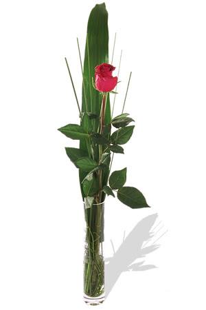 1 adet cam vazo içerisinde kirmizi gül  Gaziantep hediye sevgilime hediye çiçek