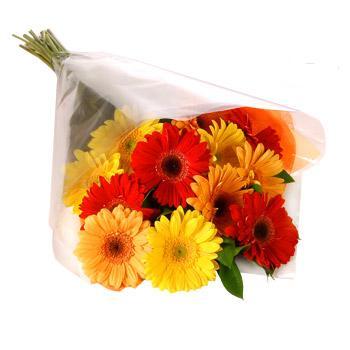 Karisik renklerde gerbera buketi  Gaziantep çiçek yolla
