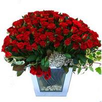 Gaziantep yurtiçi ve yurtdışı çiçek siparişi   101 adet kirmizi gül aranjmani