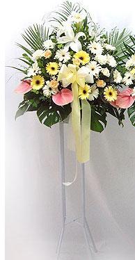 Gaziantep İnternetten çiçek siparişi   perförje çiçegi dügün çiçekleri