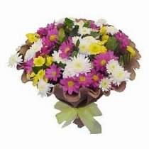 Gaziantep 14 şubat sevgililer günü çiçek  Mevsim kir çiçegi demeti