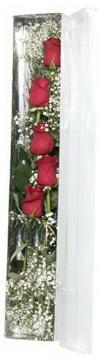 Gaziantep kaliteli taze ve ucuz çiçekler   5 adet gülden kutu güller