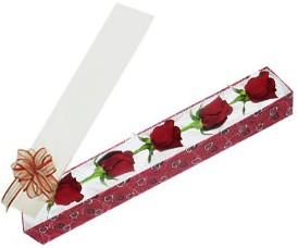 Gaziantep güvenli kaliteli hızlı çiçek  kutu içerisinde 5 adet kirmizi gül