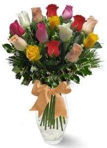 15 adet vazoda renkli gül  Gaziantep güvenli kaliteli hızlı çiçek