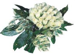 Gaziantep online çiçekçi , çiçek siparişi  9 Beyaz gül Özel kisiler için