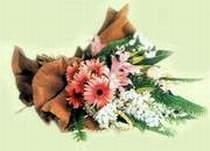 Gaziantep çiçek yolla  Karisik güzel mevsim çiçekleri