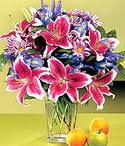 Gaziantep çiçekçi mağazası  Sevgi bahçesi Özel  bir tercih