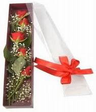 kutu içinde 5 adet kirmizi gül  Gaziantep online çiçekçi , çiçek siparişi