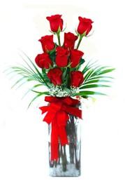 Gaziantep 14 şubat sevgililer günü çiçek  9 adet mika yada cam vazoda gül tanzimi