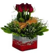 Gaziantep uluslararası çiçek gönderme  7 adet mika yada cam vazoda gül tanzimi