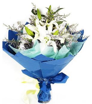 Gaziantep çiçek satışı  4 adet dal kazablankadan görsel buket