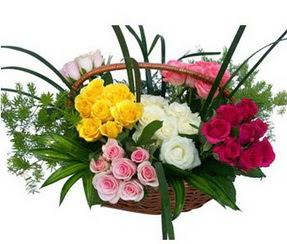 Gaziantep çiçek online çiçek siparişi  35 adet rengarenk güllerden sepet tanzimi