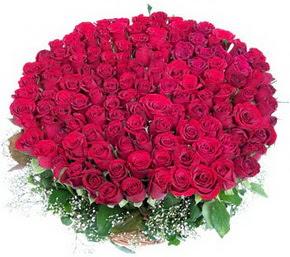 Gaziantep internetten çiçek siparişi  100 adet kırmızı gülden görsel buket