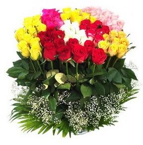 Gaziantep çiçekçi mağazası  51 adet renkli güllerden aranjman tanzimi