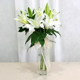 Gaziantep çiçek satışı  2 dal kazablanka ile yapılmış vazo çiçeği