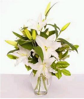 Gaziantep uluslararası çiçek gönderme  2 dal cazablanca vazo çiçeği