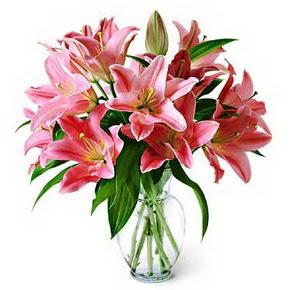 3 dal kazablanka görsel vazosu  Gaziantep online çiçekçi , çiçek siparişi