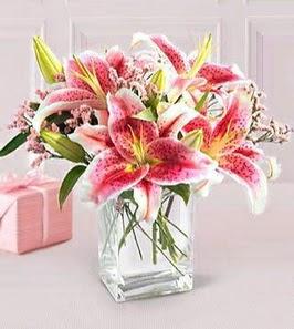 2 dal kazablanka görsel vazosu  Gaziantep kaliteli taze ve ucuz çiçekler