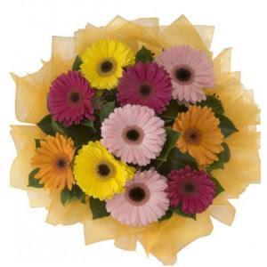 Gaziantep online çiçek gönderme sipariş  11 adet karışık gerbera çiçeği buketi