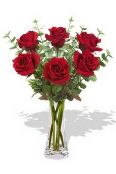 Gaziantep çiçek mağazası , çiçekçi adresleri  6 kırmızı gül vazosu
