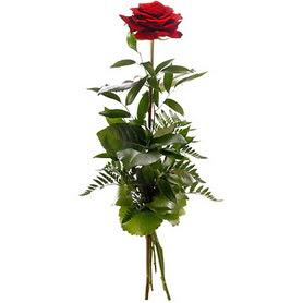 Gaziantep internetten çiçek siparişi  1 adet kırmızı gülden buket