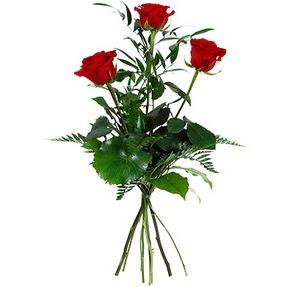 Gaziantep çiçek gönderme  3 adet kırmızı gülden buket