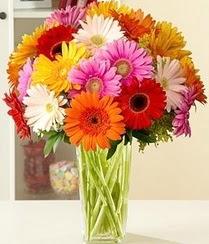 Gaziantep hediye çiçek yolla  15 adet gerbera çiçek vazosu